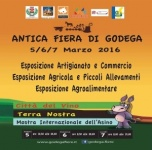 ANTICA FIERA DI GODEGA 2016